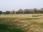 Equestrian Services Portfolio Image 4